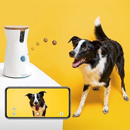 Furbo-The-Dog-Camera
