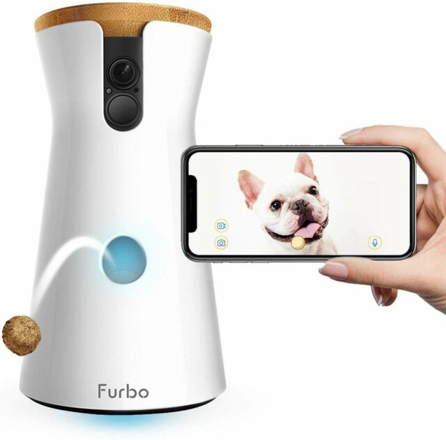 The-Furbo-Dog-Camera-Review