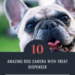 Top 10 Dog Camera With Treat Dispenser