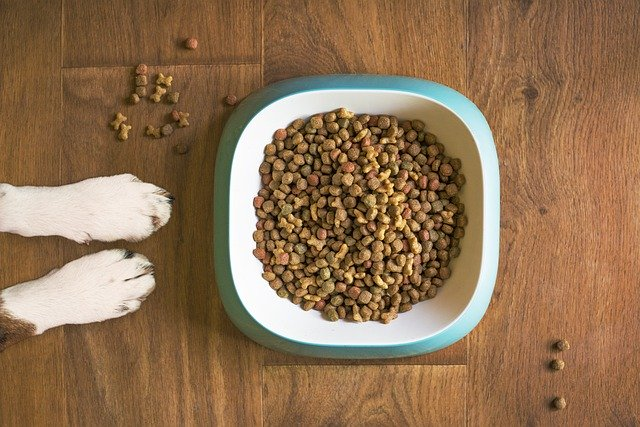 natural-dog-food-ingredients