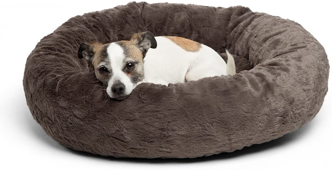 cheap-dog-beds