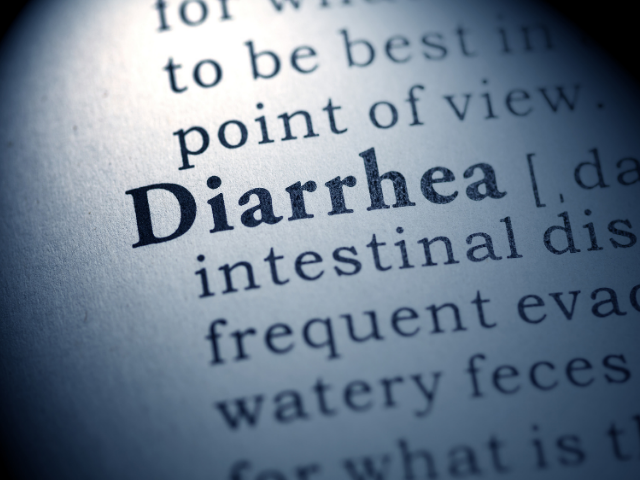 why-does-my-dog-have-diarrhea