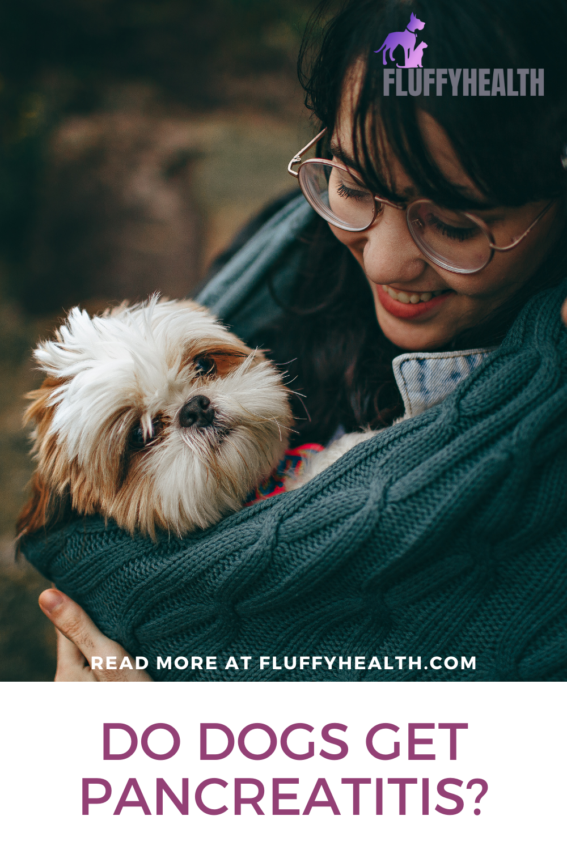 do-dogs-get-pancreatitis