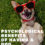 Psychological Benefits Of Having A Dog — Science Speaks Again!