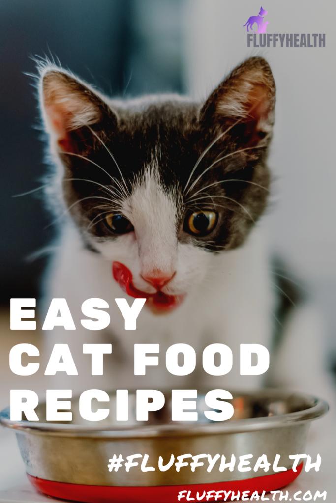 easy-cat-food-recipes