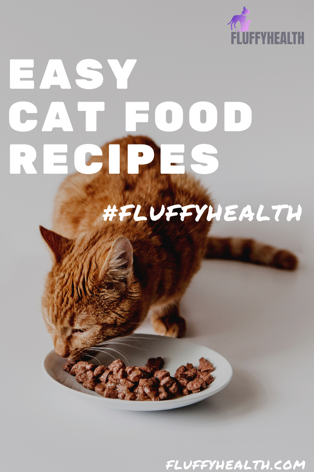 easy-cat-food-recipes