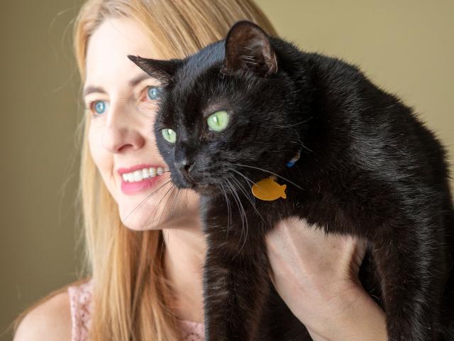 the-best-cat-breeds-for-seniors